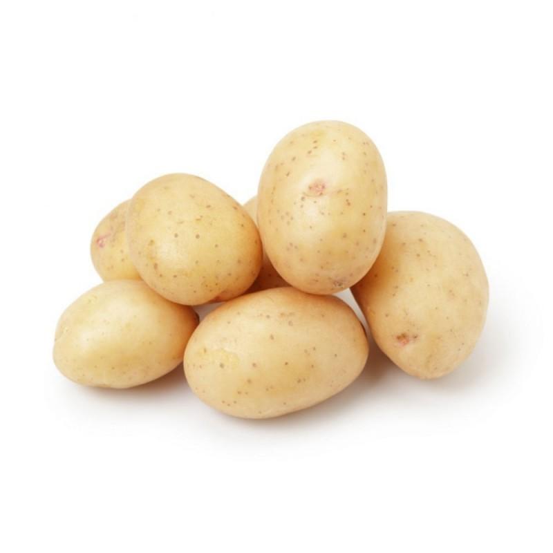 Potato Baby (1pack)